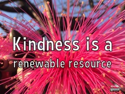 kindness 400AT